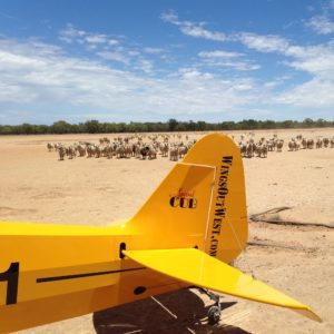 Utility Flying Courses