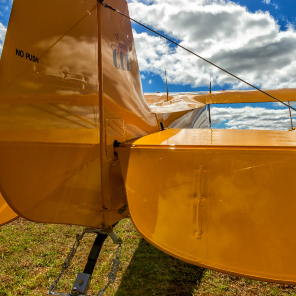 tailwheel training course